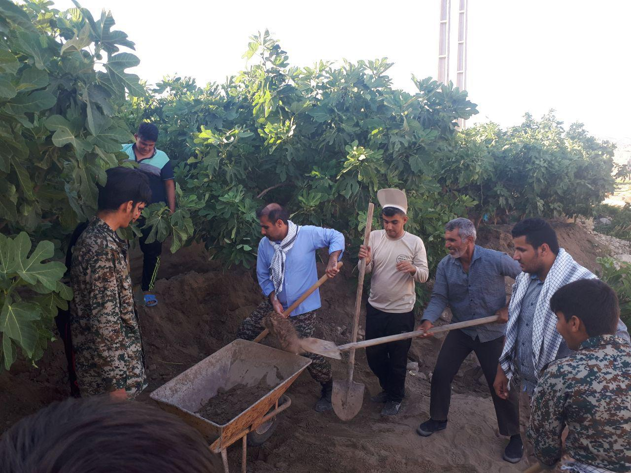 حضور گروه جهادی حوزه سلمان فارسی پل تنگ در باغات انجیر زیودار پلدختر