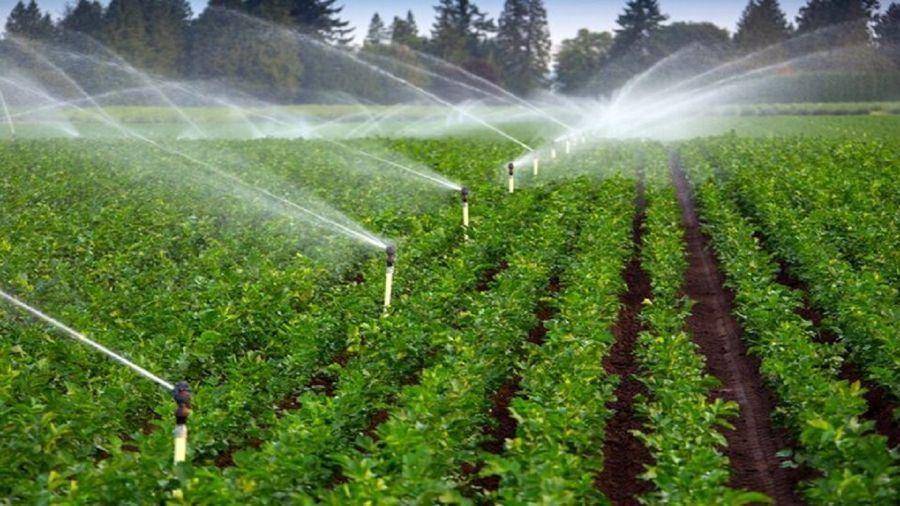 ۲۵۰ هکتار از اراضی کشاورزی لرستان آبرسانی شد